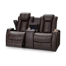 Seatcraft Omega Home Theater Seating Leather Gel Power Recli