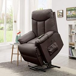 Domesis Renu Leather Wall Hugger Power Lift Chair Recliner,
